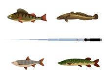 fiskvektor Royaltyfri Illustrationer