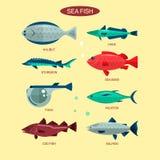 Fiskvektoruppsättning i plan stildesign Samling för hav-, havs- och flodfisksymboler Arkivbilder