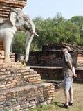 Fissando agli elefanti in Sukothai Fotografie Stock Libere da Diritti