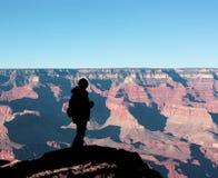 Fissando al grande canyon immagini stock