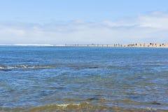 Fissatura e pesca sulla baia di Siletz fotografie stock libere da diritti