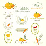 Fissi il logo di alimento vegetariano, vettore Immagine Stock