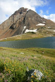 Fissile Peak, Russet Lake, and Wildflowers Stock Photos