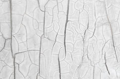 Fissure wall. White fissure wall texture and background Royalty Free Stock Photos