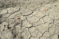 Fissured земля Стоковые Фотографии RF