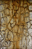 Fissures Photo stock