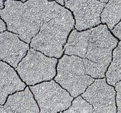 Fissures de sol sec Image libre de droits