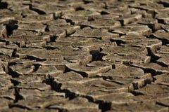 Fissures de terre sèche Image stock