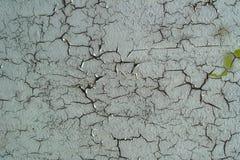 Fissures grunges de whith de texture de fond Photos stock