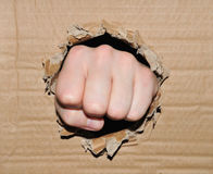 Fist. Breaking through cardboard box Stock Photo