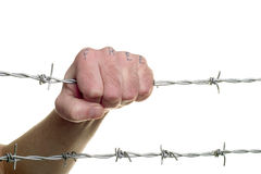 Fist & barbed wire(3) Royalty Free Stock Photo