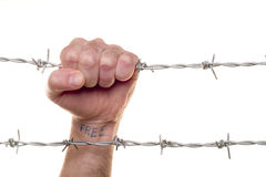 Fist & barbed wire Stock Photos
