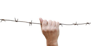 Fist clenched barbed wire Stock Images