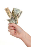 Fist full of money Royalty Free Stock Photo