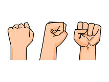 Fist of human vector. On white background (back, side, front Royalty Free Stock Images