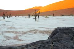 Fist light in the dead vlei Stock Photo