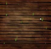 Fist snowdrop flower growing through the wooden stick, spring come,. Vector Royalty Free Stock Image