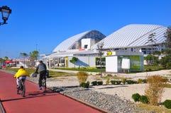 Fisth Olympic Stadium, Sochi royaltyfria foton