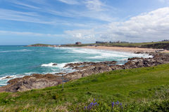 Fistral beach Newquay North Cornwall uk with bluebells and waves in spring Stock Image