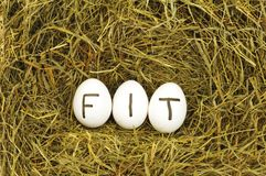 Fit Stock Image