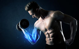 Fit athlete lifting weight with blue muscle light concept Royalty Free Stock Images