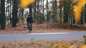 Fit attractive professional cyclocross rider in black cycling apparel and helmet riding through autumn forest. Male cyclist traini. Ng on road bike in fall park stock video