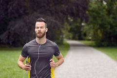 Fit bearded young man jogging through a park. Listening to music on his mobile phone, upper body approaching the camera with copy space Stock Photography