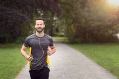 Fit bearded young man jogging through a park. Listening to music on his mobile phone, upper body approaching the camera with copy space Royalty Free Stock Image