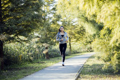 Fit beautiful woman jogging in park Stock Photos