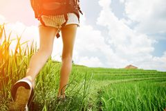 Fit and beautiful woman`s legs with backpack walking across green field at sunny day. Intentional sun glare Stock Images