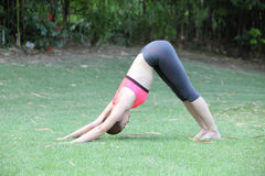 Fit blonde in dolphin pose pose by young woman on lawn Stock Photography