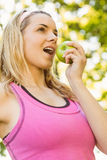Fit blonde eating green apple Stock Images