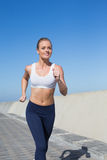 Fit blonde jogging on the pier Royalty Free Stock Images
