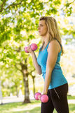 Fit blonde lifting dumbbells in the park Stock Photos