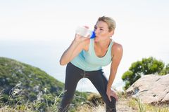 Fit blonde taking a break at summit drinking water Stock Photos