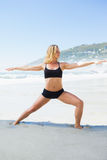 Fit blonde in warrior pose on the beach Stock Photography