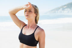 Fit blonde wiping her forehead on the beach Stock Photo