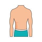 Fit body icon image. Male torso fit body icon image illustration design vector illustration