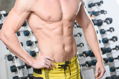 Fit bodybuilder posing in gym. Without head Stock Photos
