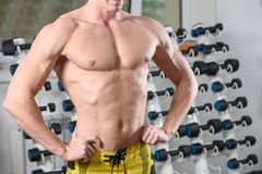 Fit bodybuilder posing in gym. Without head Royalty Free Stock Photography