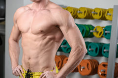 Fit bodybuilder posing in gym. Without head Stock Image