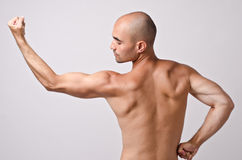 Fit bodybuilder from profile posing with his back flexing his arm showing the biceps. Stock Photo