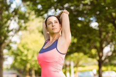 Fit brunette in sportswear stretching Stock Photography