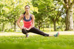 Fit brunette stretching on the grass Stock Photography