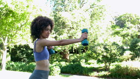 Fit brunette working out with dumbbells in the park Royalty Free Stock Photography