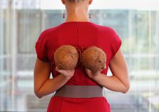 Fit business woman with two coconuts. Fit business woman in red dress with two coconuts - back view,close up Stock Photo