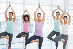 Fit class standing in tree pose at fitness studio Royalty Free Stock Images