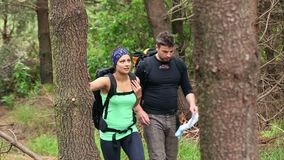 Fit couple exploring a wooded area reading a map stock video