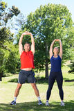 Fit couple stretching in the park Royalty Free Stock Photo