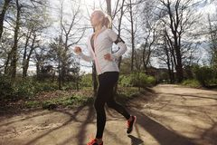 Fit female model jogging in forest Royalty Free Stock Images